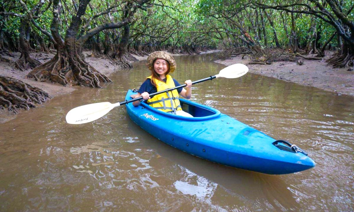 Mangrove Canoeing